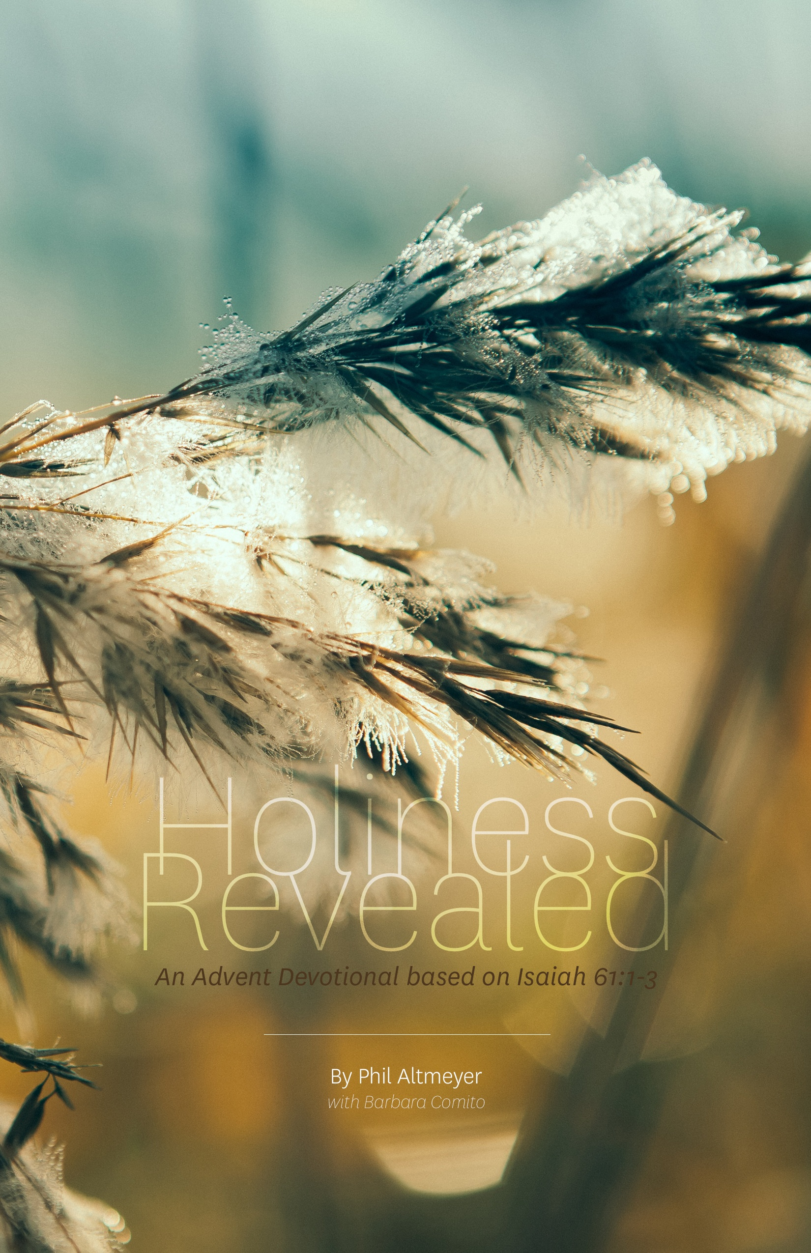 Holiness Revealed Cover